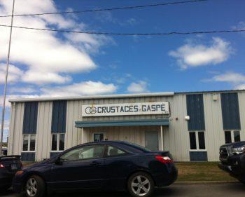 Le syndicat Unifor chez Les Crustacés de Gaspé